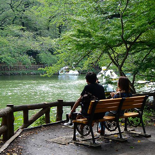 井の頭公園のカップル